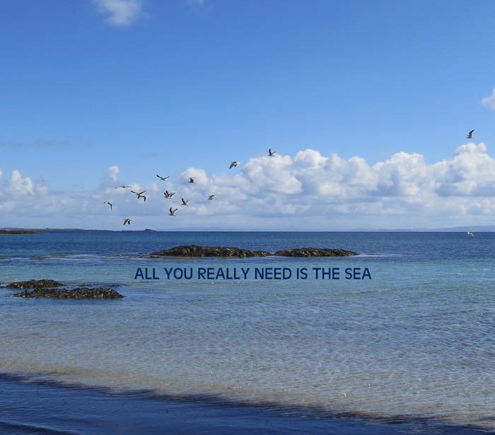 All You Really Need is the Sea – Sheila K Cameron